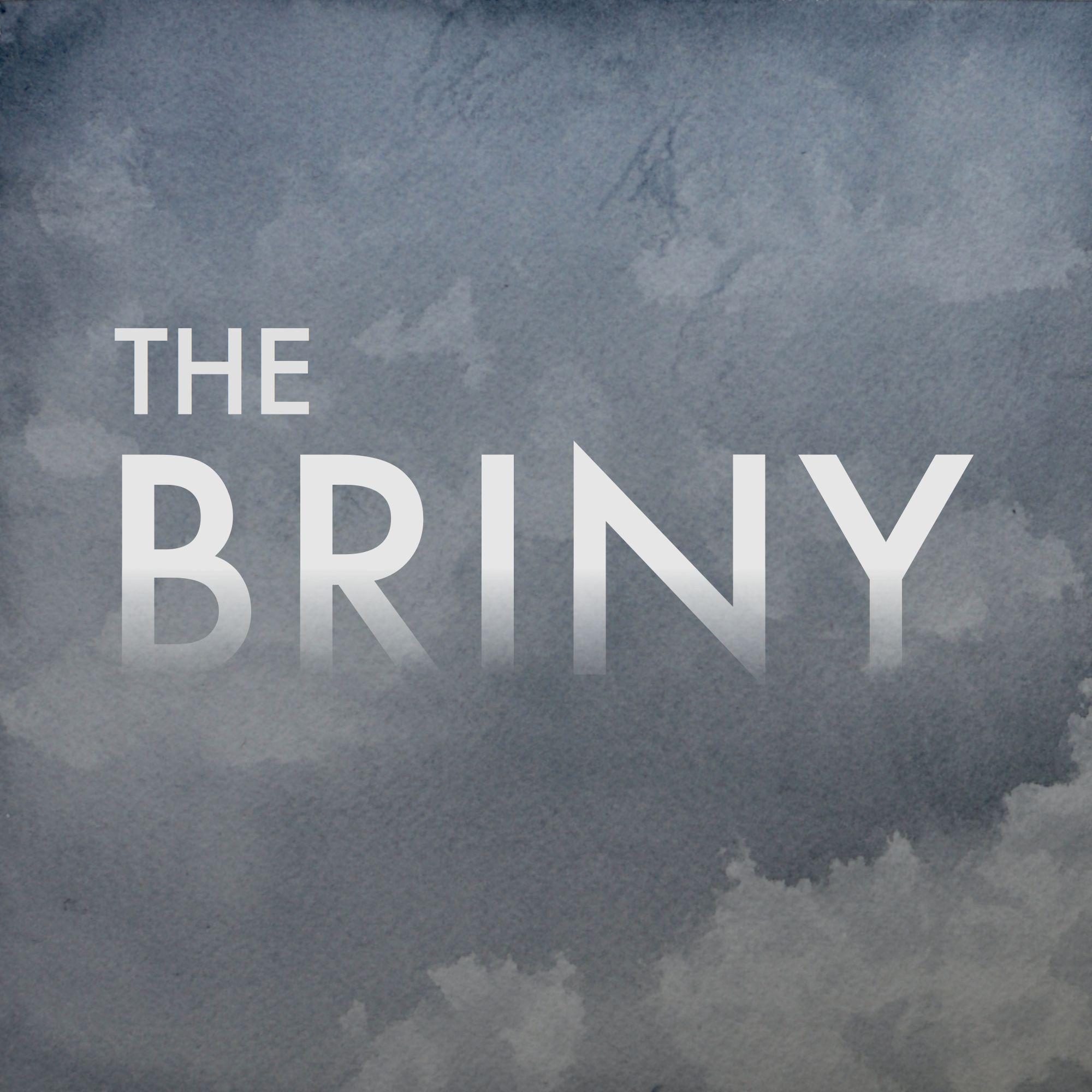 Briny_Logo_large